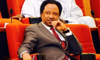 Shehu Sani has revealed why Buhari cancelled yesterday's broadcast